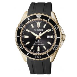 Citizen BN0193-17E Promaster Marine Eco-Drive Diver`s Watch