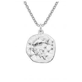 trendor 08443 Silber Sternzeichen Fische mit Halskette